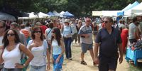 Cairns Mud Markets