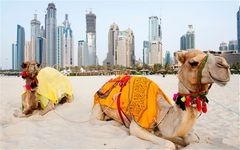 Private Dubai Experience with Abu Dhabi