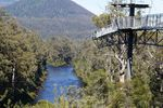 Huon Valley And Tahune Forest Air Walk
