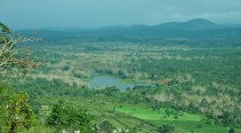 Wild Bandipur Tours - Luxury
