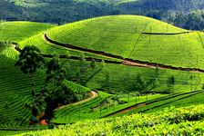 Wonderful Kerala - Budget