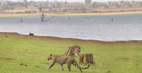 Kabini Weekend Package - Budget