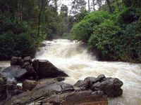 Coorg Homestay Package - Deluxe
