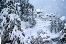 Blissful Shimla - Budget