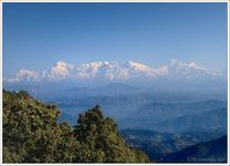Bliss of kumaon - Premium
