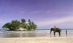 Srilanka The Green Hills 3 nights 4 days - Premium