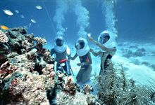 Andaman Under Water Diving Package For 4 Nights